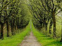 Agriturismo nel verde a Piacenza