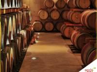 Etichette DOP vini siciliani